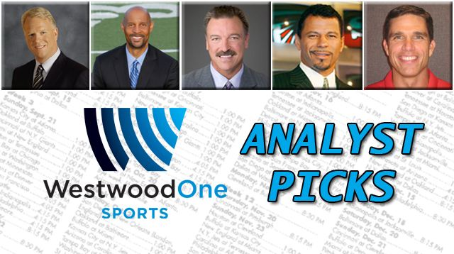 Analyst Picks 2013