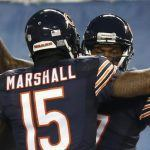 Alshon Jeffery, Brandon Marshall