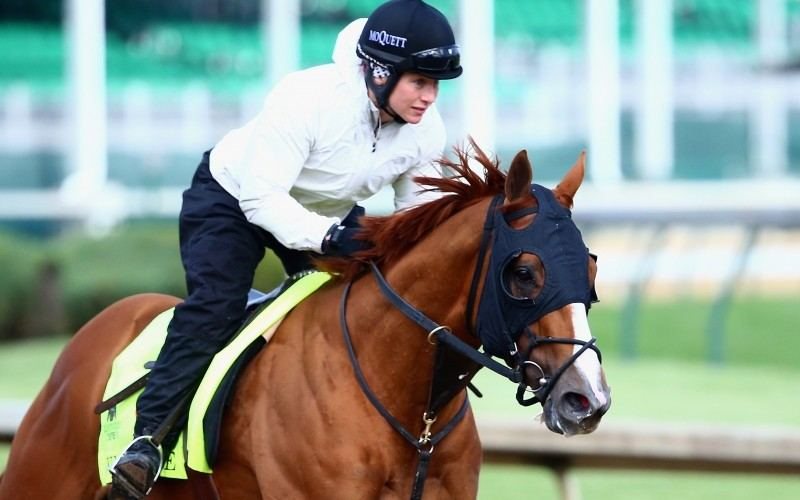 LOUISVILLE, KY - MAY 05:  Whitmore trains on the track for the Kentucky Derby at Churchill Downs on May 05, 2016 in Louisville, Kentucky.  (Photo by Maddie Meyer/Getty Images)