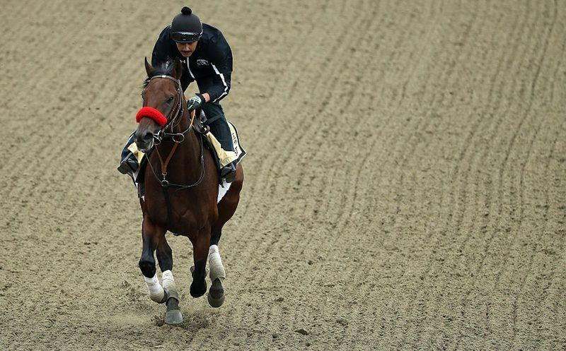 Preakness Stakes - Previews